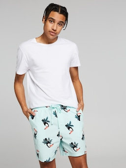 Volley Short Toucan Mint